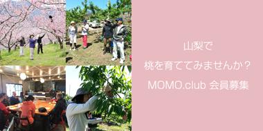 MOMO.club